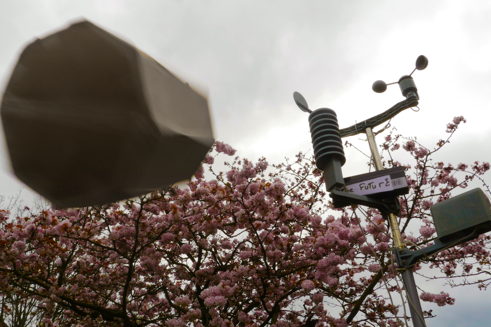 strange octagonal device flying through the sky above a fully blossoming cherry tree, on the right is a weather station with wind, rain and temperature sensors and a sign with the word 'Future' printed on it