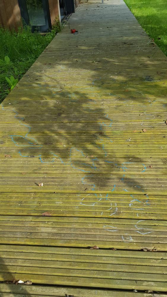 leaf shadows traced in chalk in Juliet's garden in Oxfordshire
