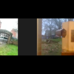 A split screen zoom link up with a bell on the left and the Future Machine and Rachel on the right