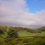 rolling hills, an oak tree, sky and clouds