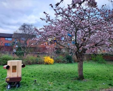 Future Machine sat next to the cherry tree in full pink blossomin Christ Church Gardens April 2021