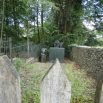 wooden fence posts, a dry stone wall, a small green electricity substation, a metal fence and trees