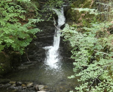 a central water fall, between slate rocks, falling into a pool of pale green, rocks and branches with green leaves on either side
