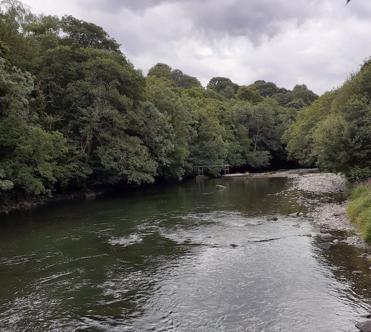 looking down from the bridge onto the wide water of the River leven and trees on either side
